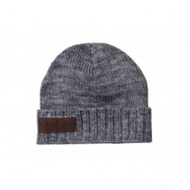 Amplifi Woodchopper Beanie - gray